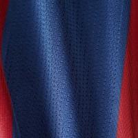 Bayern Munich Red and Blue